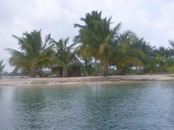 1025950 495078873944560 623243066 o 600x450 - Boat Trip Panama Colombia from Panama City to Sapzurro, 5 Days - 4 Nights
