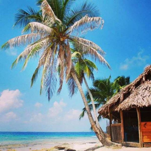 10588564 10152601285808748 1536578488 n 600x600 - Boat Trip Panama Colombia from Panama City to Sapzurro, 5 Days - 4 Nights
