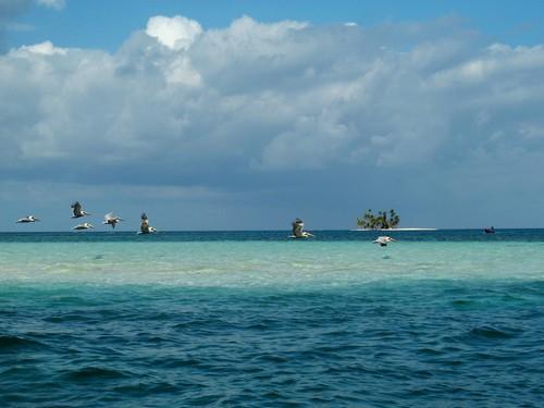 5301983802 0b3ea2620b o - Boat Trip Colombia Panama from Sapzurro to Panama City 5 Days - 4 Nights